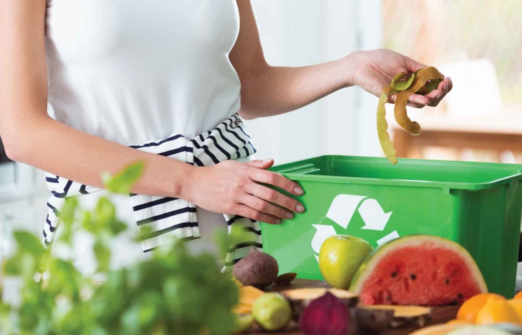 Organic, Solid Waste Composting with Bioclean Compost