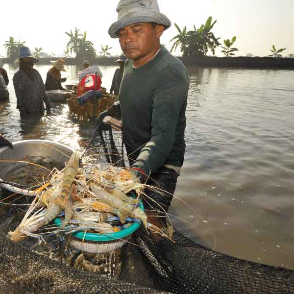 aquaculture-005