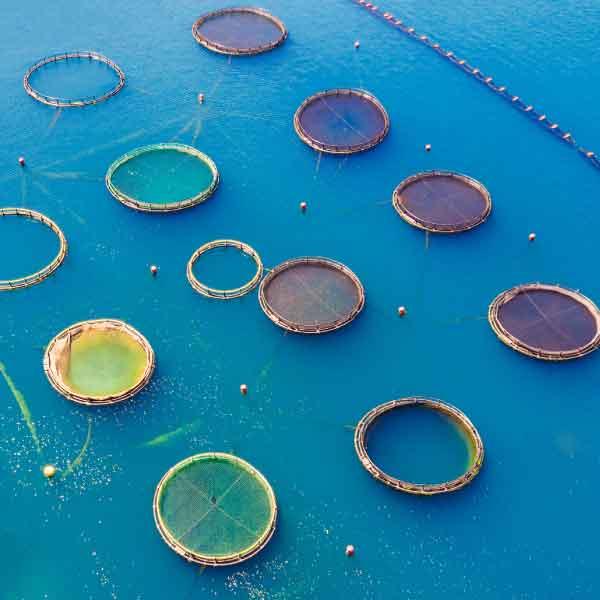 aquaculture-009