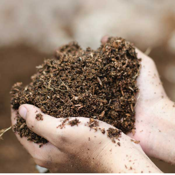 compost-003