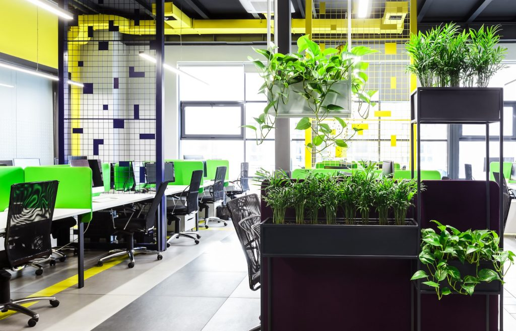 OB Care - Natural Cleaning Solutions for Sustainable Offices