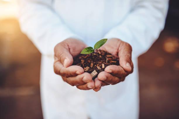 Biological Seed treatment
