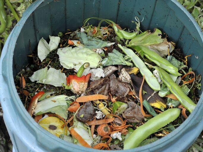 Composting at home DIY ways